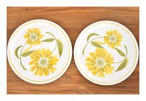 Mikasa 'Fresh as Spring' dinner plates