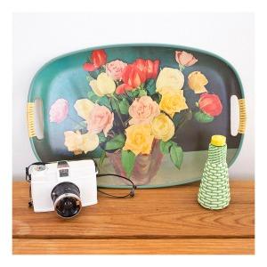 Diana+ lomography camera
