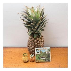 Pineapple perpetual calendar
