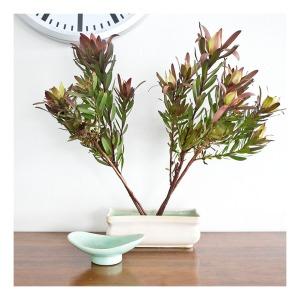 McCredie 'frog' log vase & posy vase
